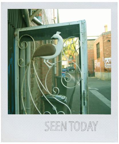 Bird_door