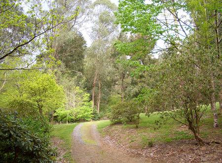 Green_path_outside12