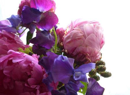 Flowers_abundance2