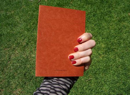 Souvenir_journal