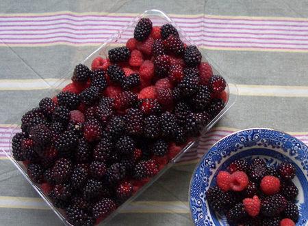 Berries_yum1