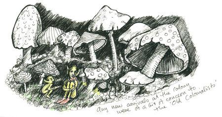 Elaine_haby_mushroom