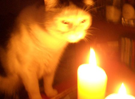 Glow_candle_1