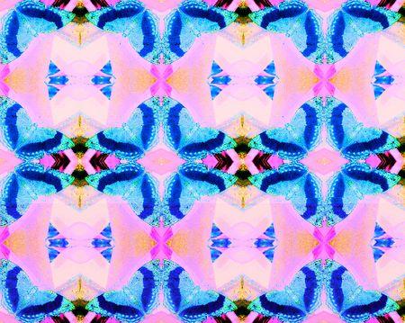 Jurate_Sasnaitis_rainbow of butterflies