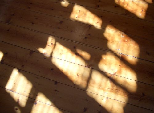 Floor_shadow_sunlight