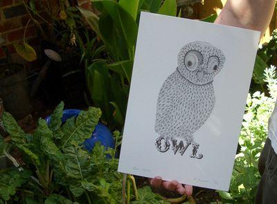 Owl_06