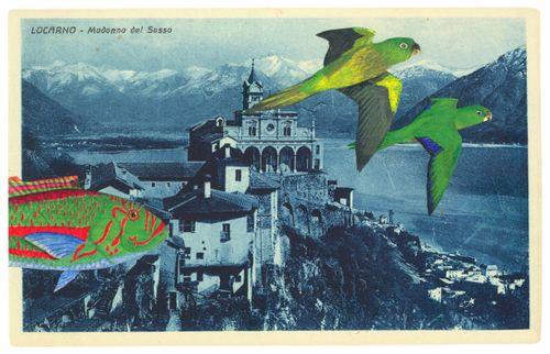 Haby_postcardcollage_2010_1