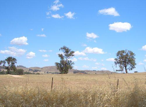 Canberra_jaunt01