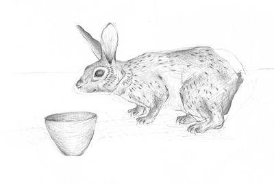 Jennison_rabbit