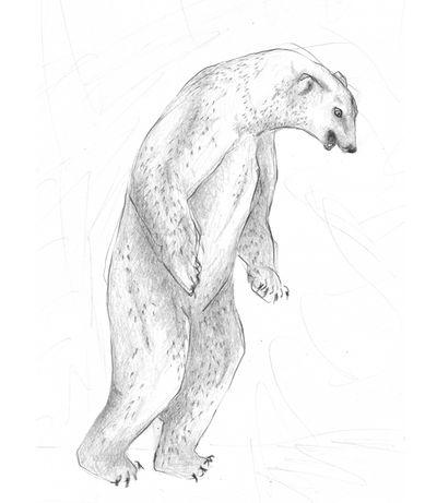 Jennison_polar_bear_05