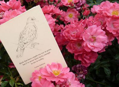 Birds_in_print_09