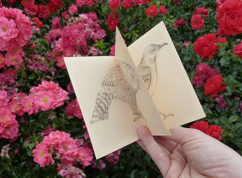 Birds_in_print_02