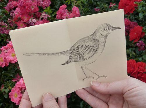 Birds_in_print_05