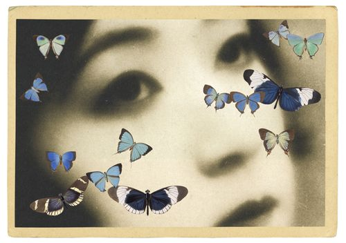 Gracia_Haby_butterflypostcard01