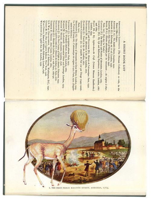 Ballooning_gracia_01