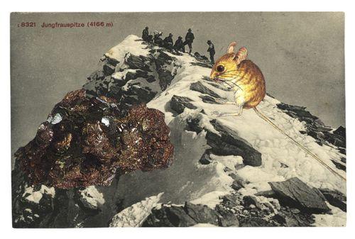 Graciahaby_postcardcollage13