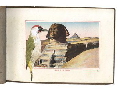 GraciaHaby_Egypt13