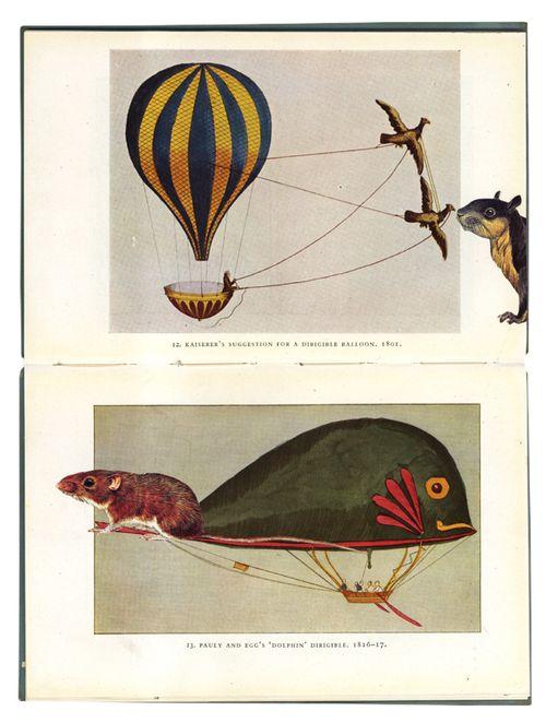 Ballooning_gracia_04