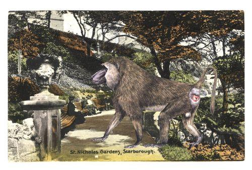 Graciahaby_postcard02