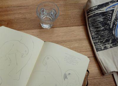 Sketchbook00