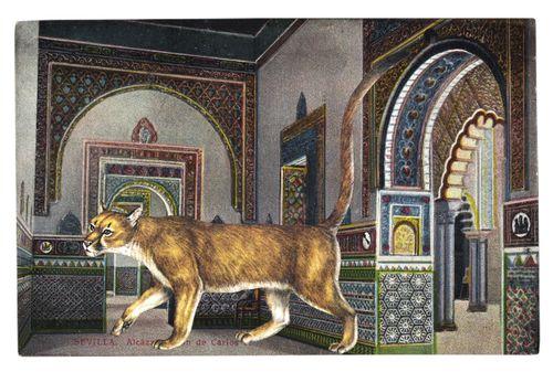Graciahaby_postcardcollage31