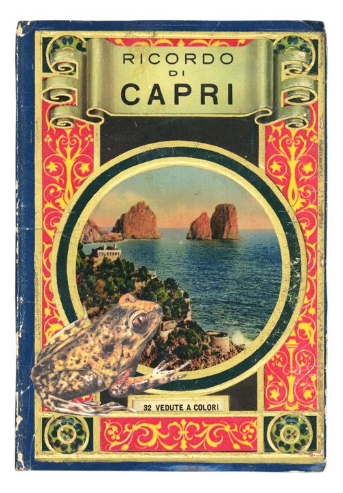 Graciahaby_capri_cover