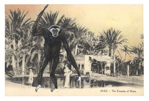 Gracialouise_process7withcollage