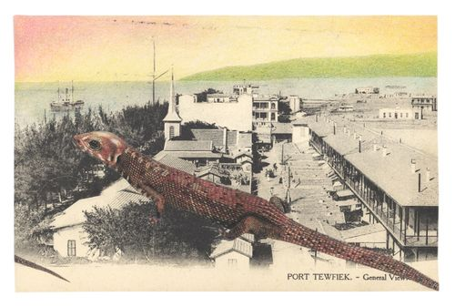 Gracialouise_process8withcollage