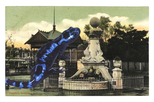 Graciahaby_geelongpostcardcollage00