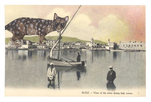 Gracialouise_process6withcollage