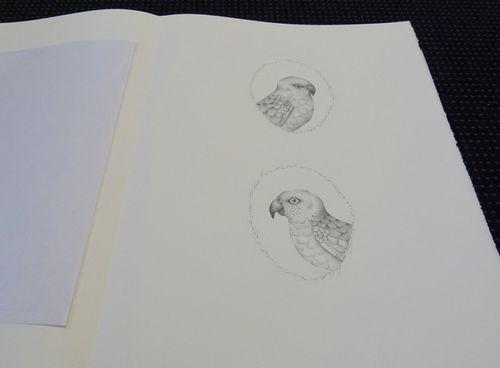 Gracialouise_yearofbirds18