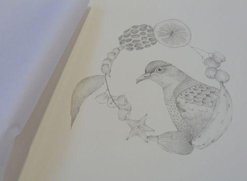 Gracialouise_yearofbirds26