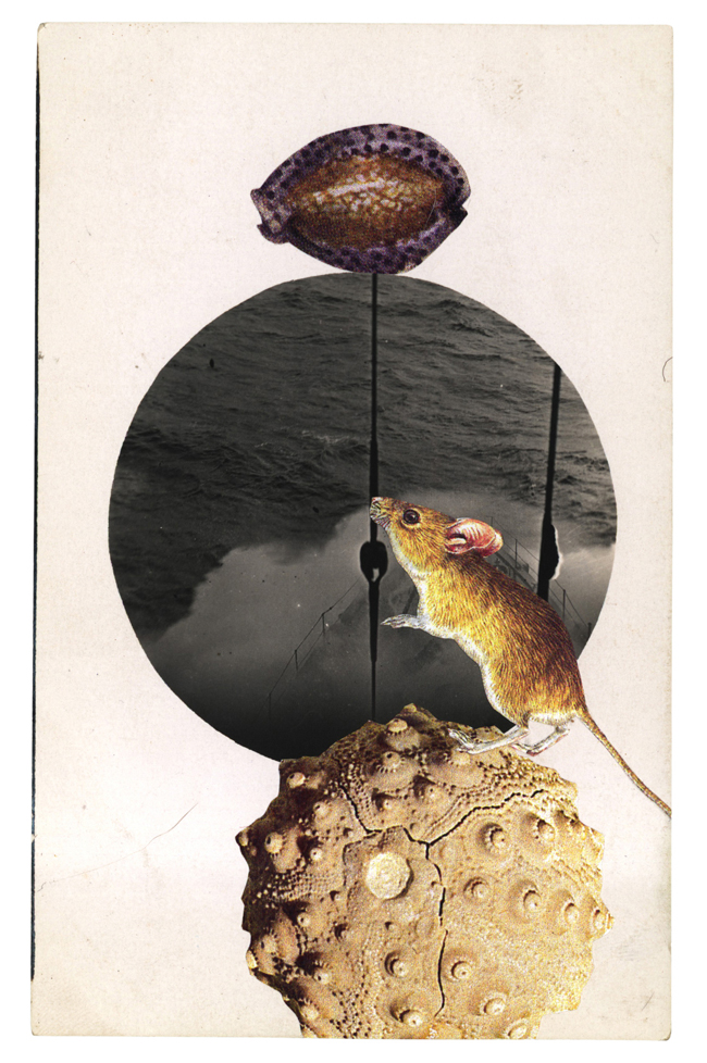 Graciahaby_postcardcollage_vert03