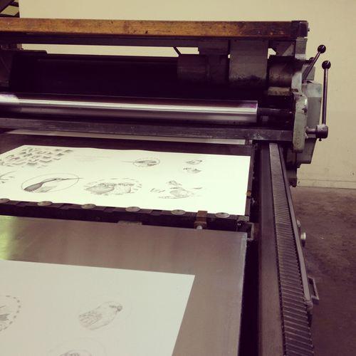 Gracialouise_printing07