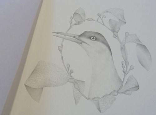 Gracialouise_yearofbirds37