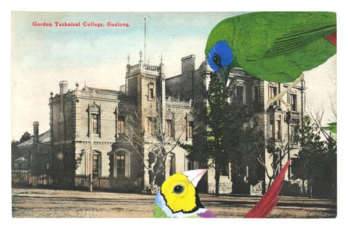 Graciahaby_geelongpostcardcollage10