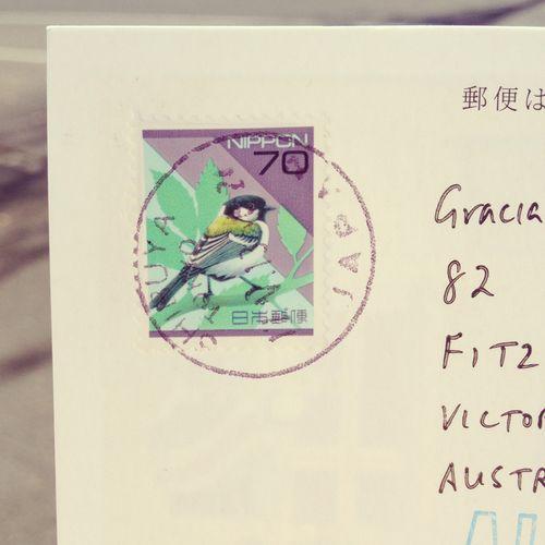 Gracialouise11