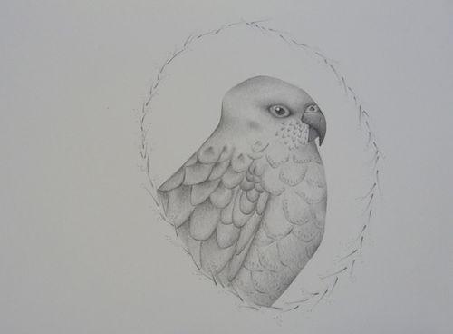 Gracialouise_yearofbirds17