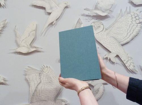 Louisejennison_artistsbook01