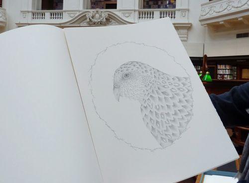 Gracialouise_birds34