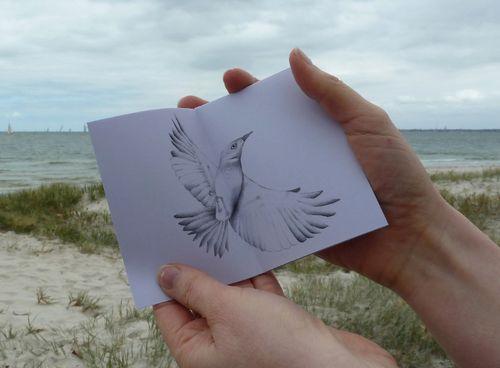 Gracialouise_seaside_birds14