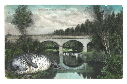 Graciahaby_geelongpostcardcollage09