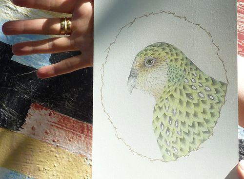 Louise_jennison_kakapo02