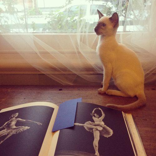 Gracialouise_lenni_ballet