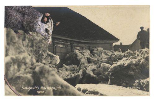 Graciahaby_2014postcardcollage01