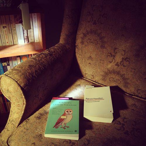 Gracialouise_home_reading