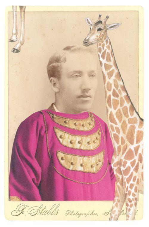 Gracia haby_giraffe