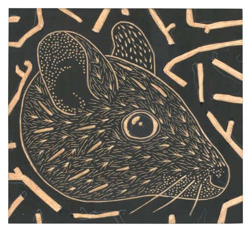 Louise Jennison_wood engraving 01