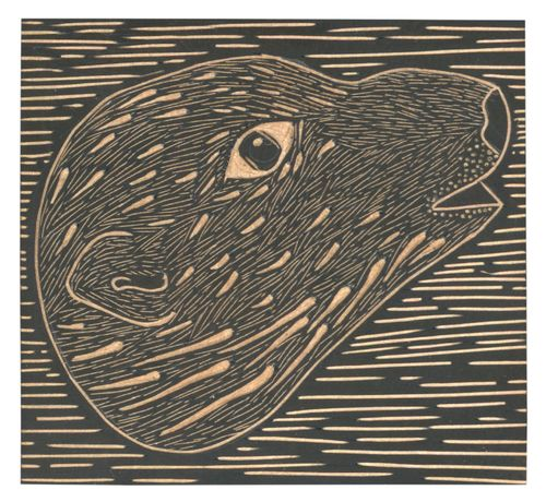 Louise Jennison_wood engraving 04