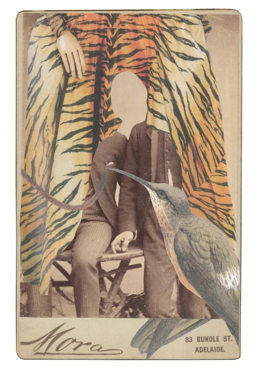 Gracia_haby_cabinet_card_collage02A